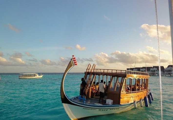 马尔代夫海钓趣闻_看看大家都钓到了什么
