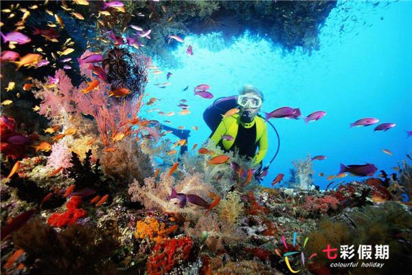 斐济一日游